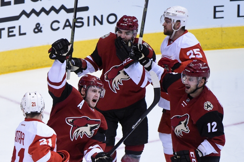 Do It Yourself Home Design: Arizona Coyotes Have A Lot Of Options With Their 20th
